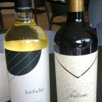 Degustação dirigida de vinhos argentinos